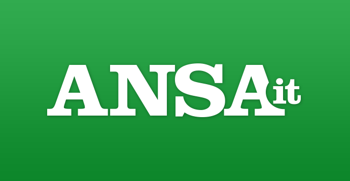Immagine Nuova Zelanda:Lancini (Lega), violenza va ripudiata (ANSA), Danilo Oscar Lancini - Europarlamentare Lega Nord - Europa Da Oscar #europadaoscar